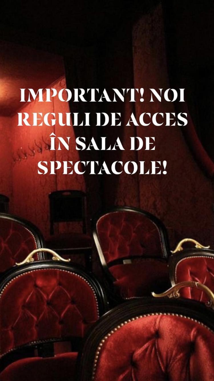Read more about the article IMPORTANT! NOI REGULI DE ACCES ÎN SALA DE SPECTACOLE!